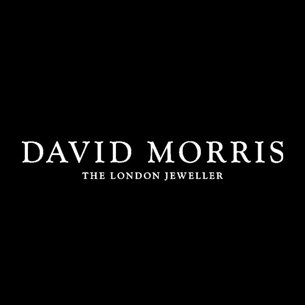ديفيد موريس